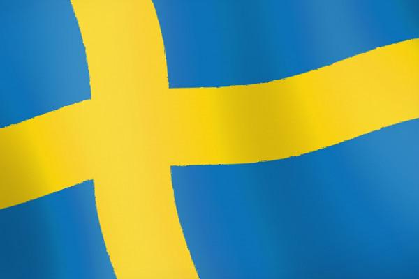 Выгодная покупка программ в День шведского флага